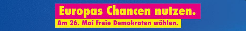 FDP Europawahl